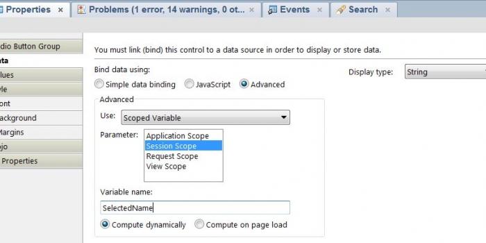 XPagesのRadio Button Groupから選択された値をクライアントJavascriptで取得する方法